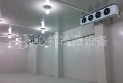 上海冷冻冷库安装