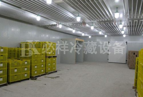 上海速冻冷库生产厂家