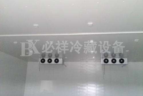 北京水果保鲜库